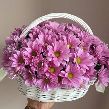 گل های تصفیه کننده هوا